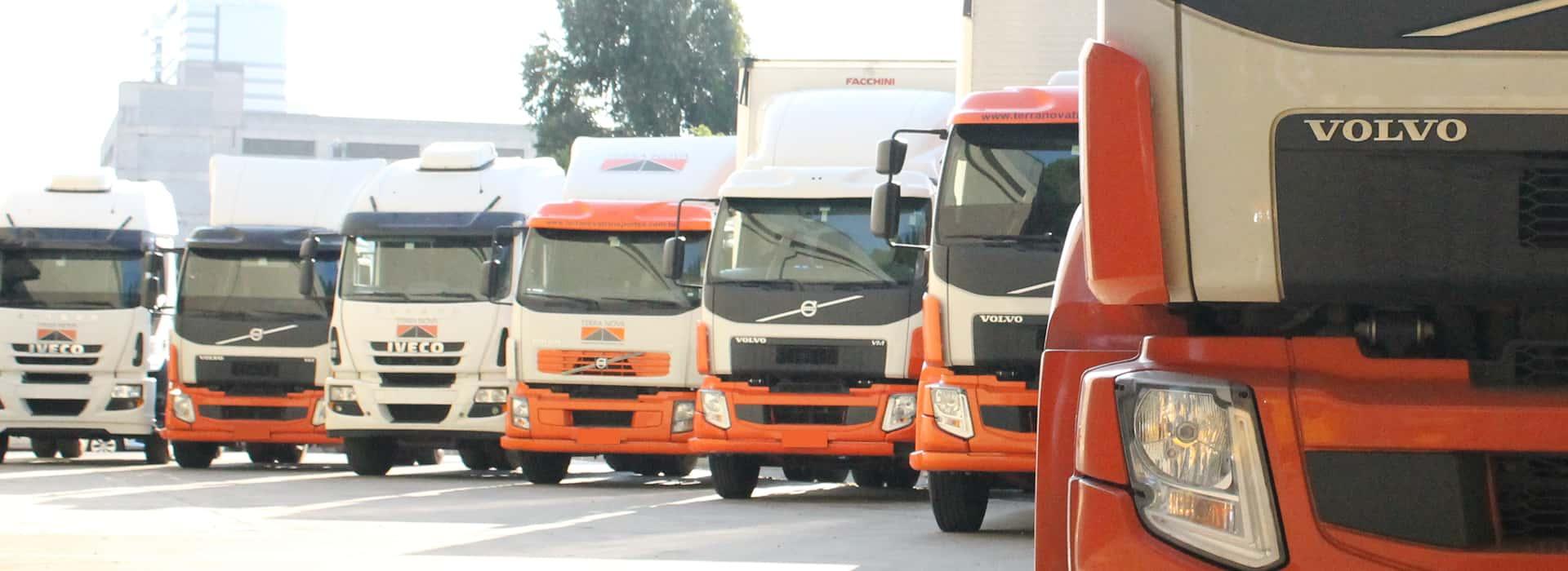 frota de veículos caminhão para transporte de carga terra nova logistica